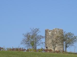 La tour vue du vignal du château